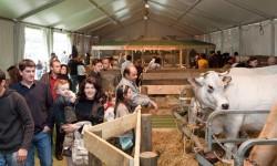 Foire internationale 2010 : à l'heure du bilan, les organisateurs se veulent positifs