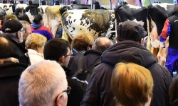 L'Occitanie en force au salon de l'agriculture