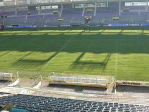 Coupe du monde de rugby 2023 : Les villes hôtes réaffirment leur soutien dr