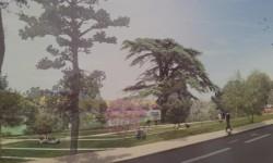 Île du Ramier : l'espace nature ouvrira en 2018
