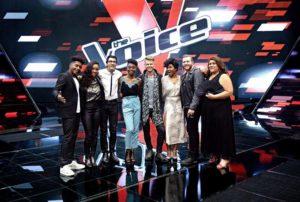 The Voice la Tournée @Bureau233 Lionel Guericolas