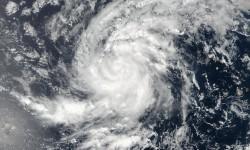 Soutien de Toulouse Métropole aux sinistrés de l'ouragan Irma