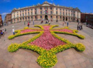 Un jardin éphémère s'installe Place du Capitole Cpatrice nin