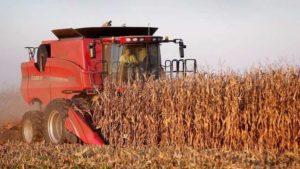 Les agriculteurs d'Occitanie s'inquiètent de la hausse des charges sur les emplois saisonniers cdr