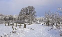 Alerte à la neige et au verglas dans le Tarn et dans l'Aveyron