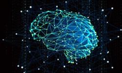 Institut d'Intelligence Artificielle : le projet toulousain pré-sélectionné