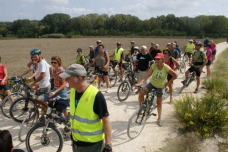 Cinq Réseaux Express Vélo pour améliorer la mobilité dans l'agglomération toulousaine