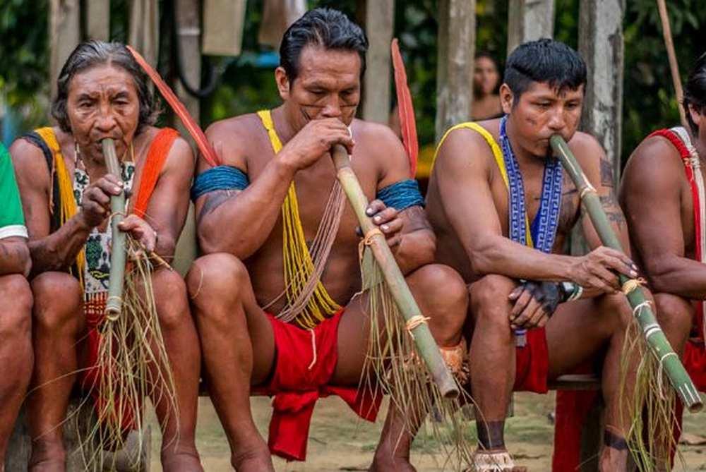 Toulouse. Le Muséum part à la rencontre des peuples autochtones