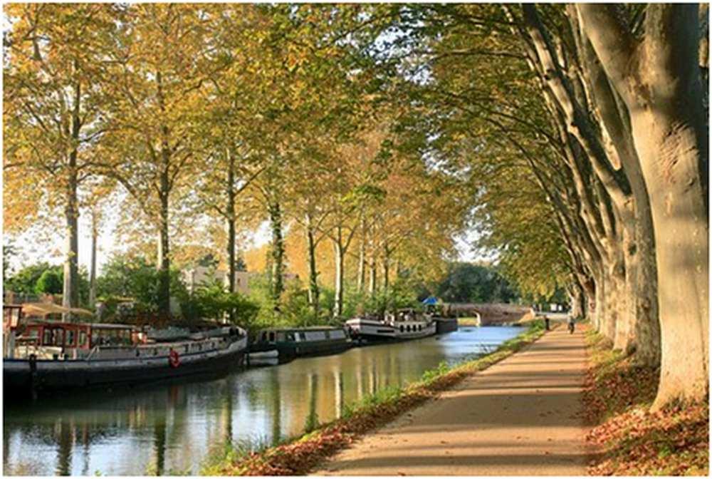 Toulouse : top 3 des métiers et secteurs d'avenir de la Ville rose  cdr