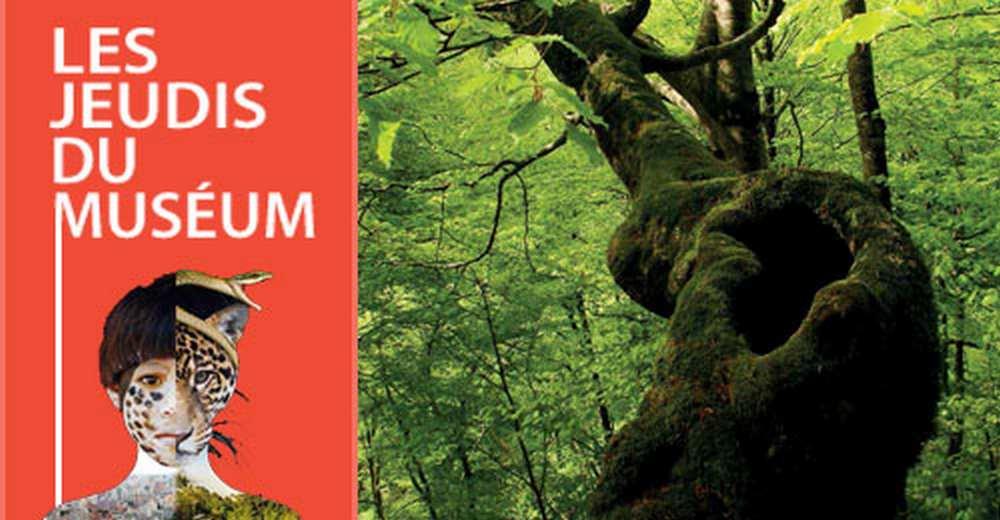 Toulouse. Le Muséum au chevet de la forêt amazonienne cdr